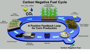 carbon negative fuel cell